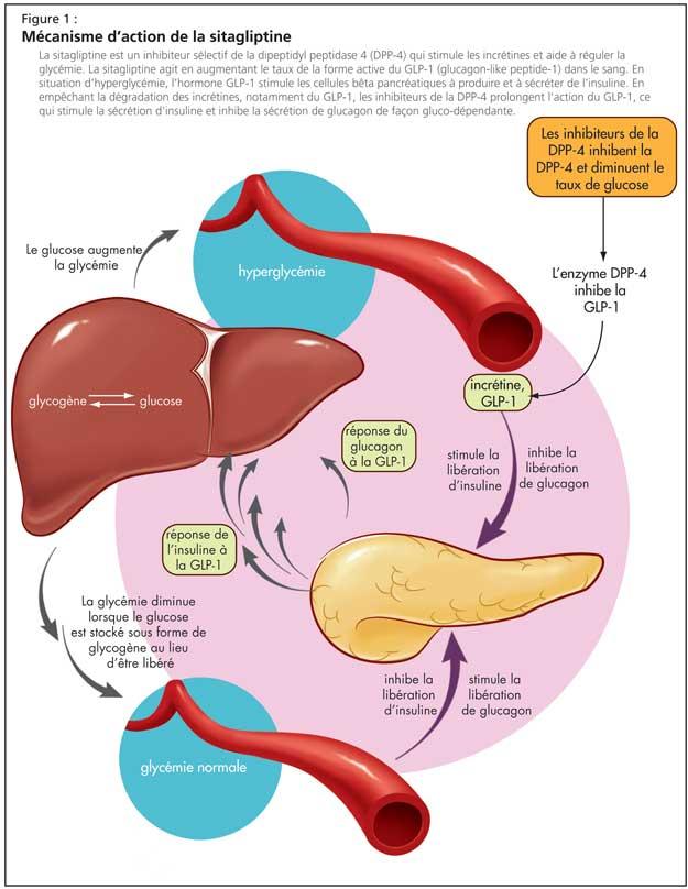 Comment traiter le diab?te de type 2 naturellement